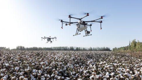 Drones en una zona rural.