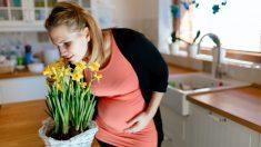 Cambios del gusto y el olfato durante el embarazo
