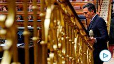 Pedro Sánchez vuelve a su escaño tras una de sus intervenciones. Foto: EFE
