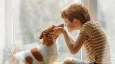 Descubre qué enfermedades puede transmitir un perro a un niño