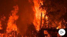 Imagen de los incendios en Australia. Foto: EP