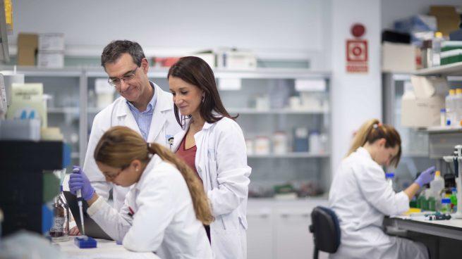 Mutua Madrileña destinará este año 2,5 millones de euros al apoyo de la investigación médica