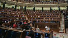 Actualmente solo quedan cuatro sillas vacías en la bancada azul. (Foto. PSOE)