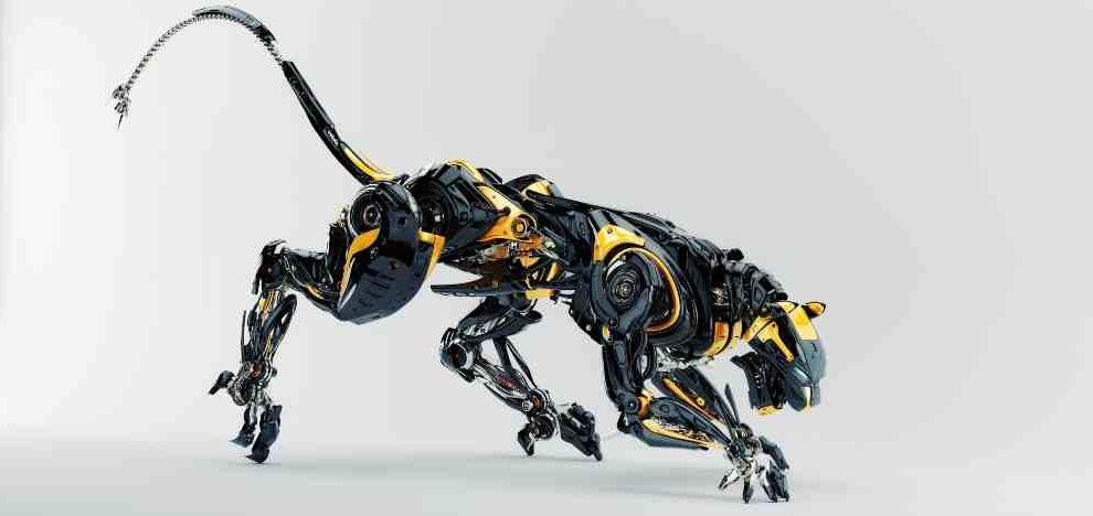 Patas biónicas diseñadas para mascotas