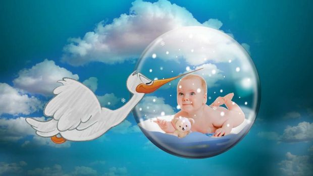 La fertilidad y la infertilidad