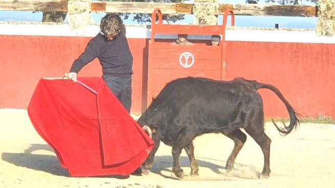 José Tomás se prepara en el campo madrileño