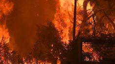 El humo de los incendios de Australia da la vuelta al mundo