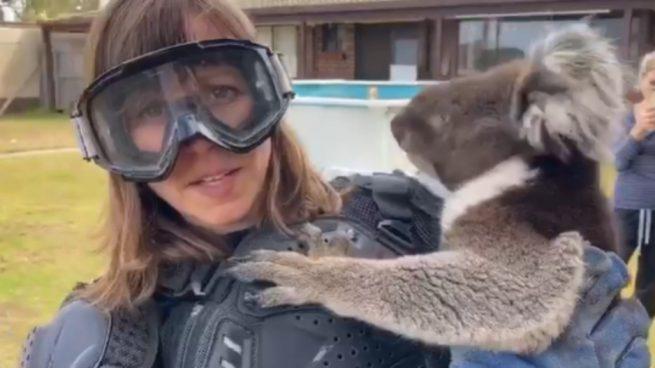 Facebook: Una reportera se protege con una armadura de un Koala