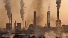 ¿Qué es el estado de emergencia climática