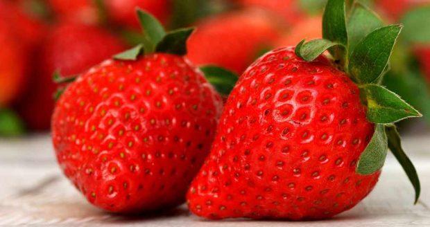 Receta de sorbete de yogur de fresa