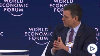 Sánchez Davos
