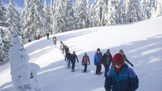 Raquetas de nieve: el deporte preferido del invierno960_720