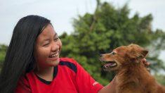 Señales en piel mascotas: el acné