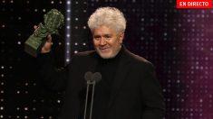 Premios Goya 2020: Gala y ganadores, en directo