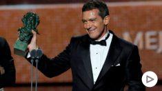 Antonio Banderas, premio Goya 2020 a Mejor Actor.