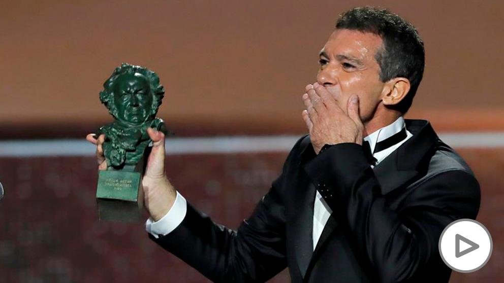Antonio Banderas recibe el primer Goya de su carrera, mejor actor protagonista por 'Dolor y gloria'.