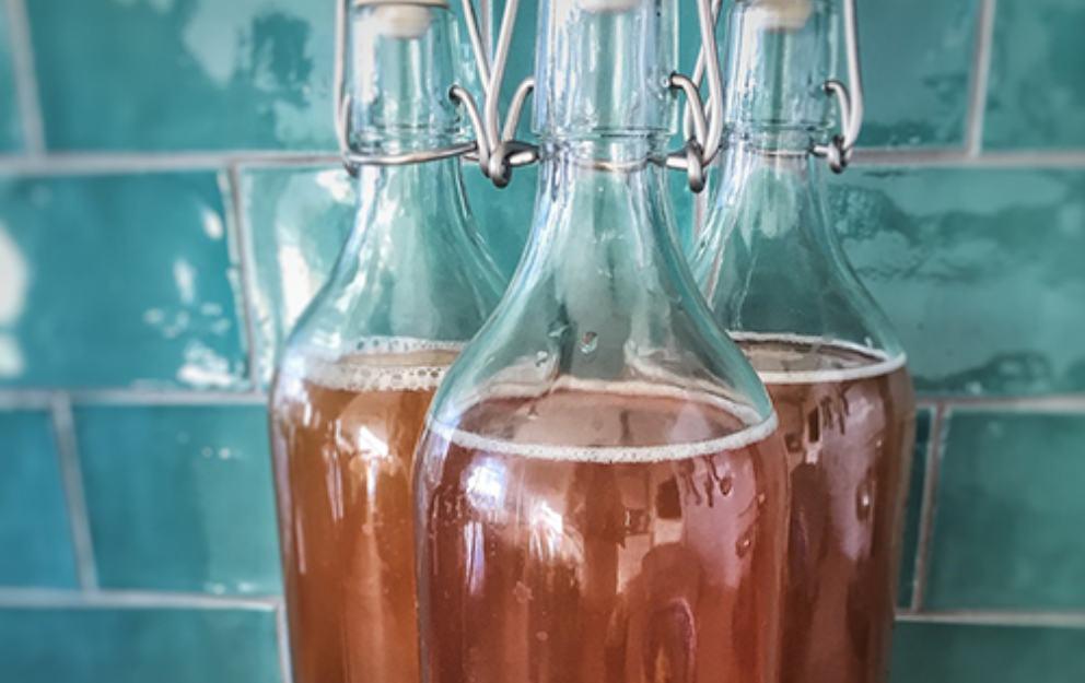 Kombucha: descubre los principales beneficios de esta bebida