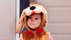 Algunas de las mejores ideas para disfrazar al bebé en Carnaval