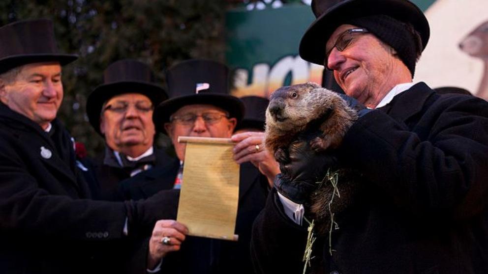 La marmota Phil predice que la primavera llegará pronto