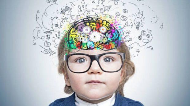 cerebro bebé