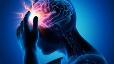 Curiosidades sobre el daño cerebral adquirido