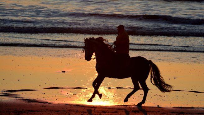 ¿Puedo pasear en la playa con mi caballo?