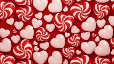 Descubre algunas de las frases más bonitas para dedicar a tu amor este día de San Valentín