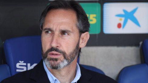 Vicente Moreno, entrenador del Mallorca. (Real Mallorca)