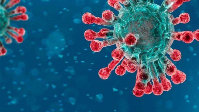 ▷ Calculan cuánto tiempo aguantan los coronavirus en la superficie de los objetos