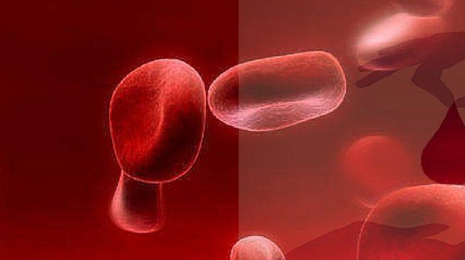 La sangre de cordón umbilical
