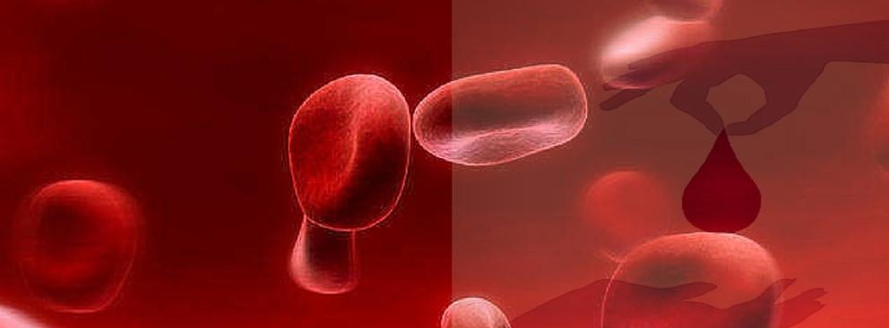 La sangre de cordón salva vidas