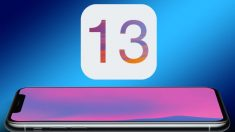Descargas de Safari en iOS_ claves para cambiar la ubicación
