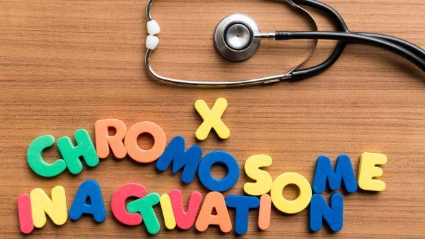 Cromosomas X síndrome de aicardi