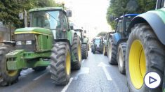 Los tractores han colapsado varias ciudades.