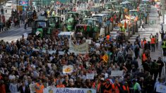 Cientos de tractores protestaron en Valencia. Foto: EFE