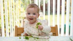 Descubre cuáles son los alimentos que pueden causar gases al bebé