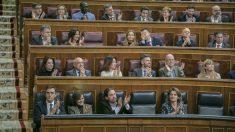 Bancada del PSOE en el Congreso de los Diputados. (Foto: Flickr PSOE)
