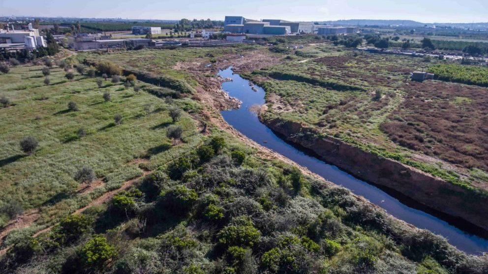 Proyecto Cañaveral después de las labores de limpieza y reforestación @Heieneken