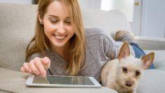 Comunicación perros: mujeres o con hombres