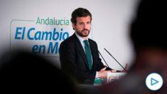 El presidente del PP, Pablo Casado. Foto: EFE