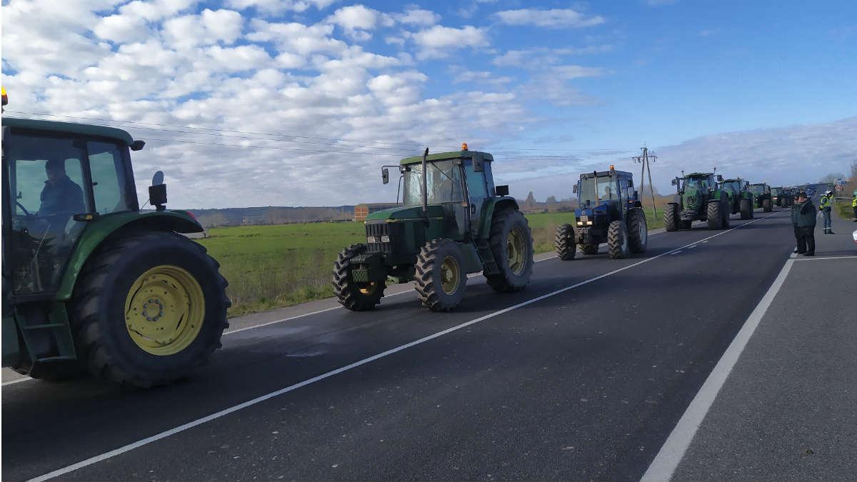 Varios tractores en una imagen de archivo.