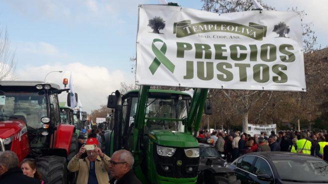 Los agricultores de Granada se unen a las protestas: una tractorada atraviesa la ciudad este miércoles
