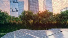 Fotovoltaicas.