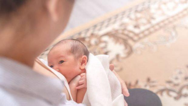 Cómo organizar la dieta después del parto