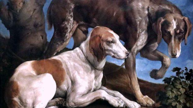 El Museo Del Perro En Nueva York