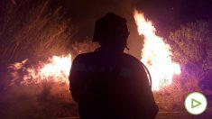 El fuego en Gran Canaria ha arrasado varios cientos de hectáreas. (Ep)