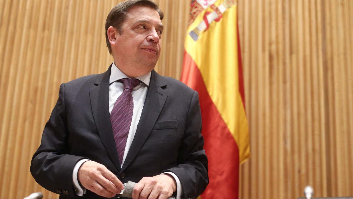 Luis Planas, ministro, en el Congreso