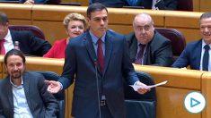 El presidente Pedro Sánchez da explicaciones sobre el 'Delcygate' en el Senado.