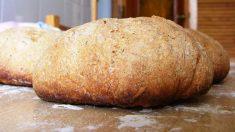 ¿Cómo hacer pan de soja?