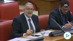 El portavoz de Vox en la Comisión de Sanidad del Congreso, Juan Luis Steegmann, dirigiéndose al ministro.